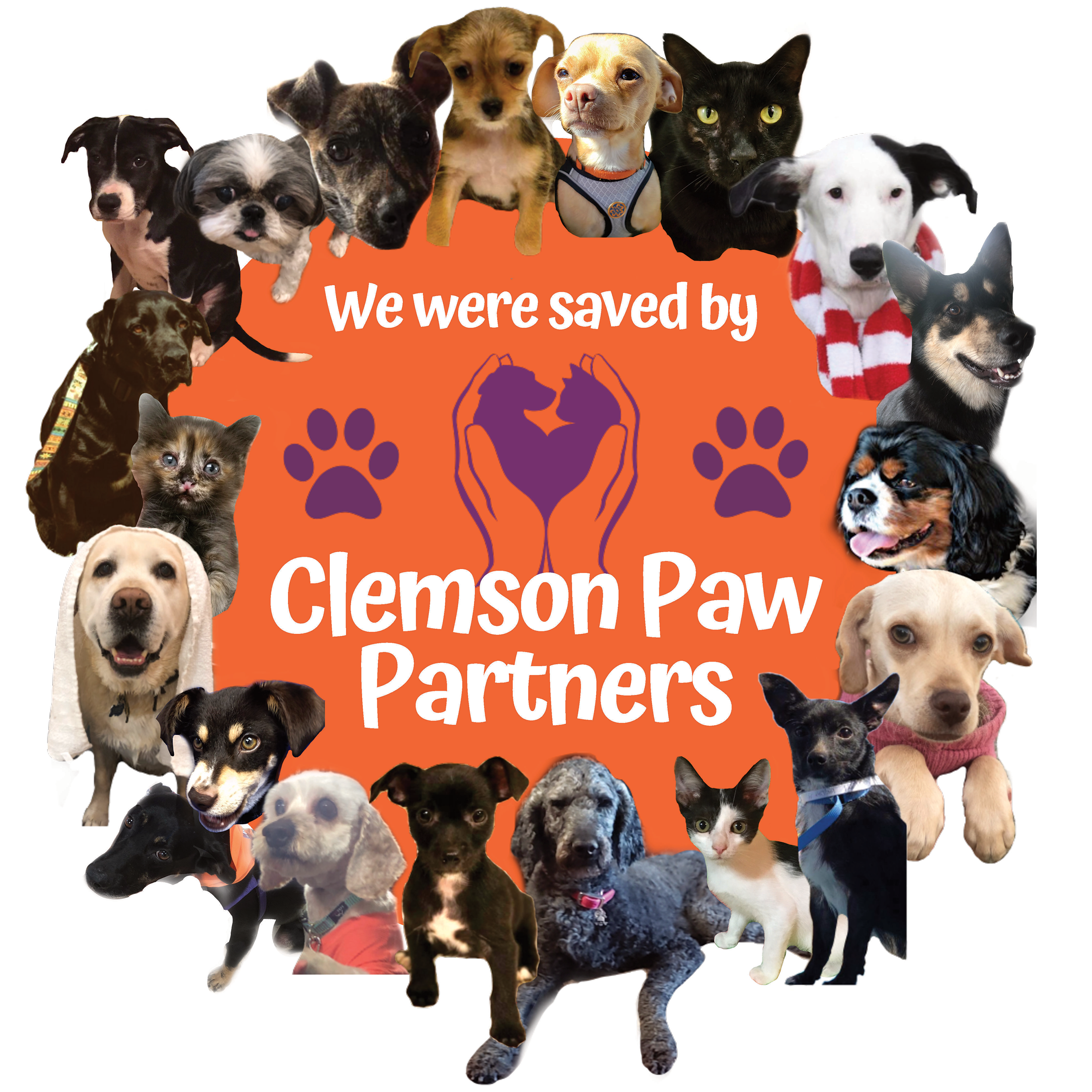 Clemson Paw Partners Saved Animals